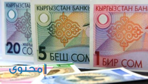 تاريخ عملة قيرغيزستان