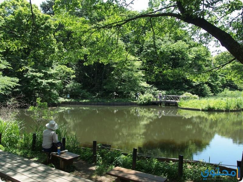 حديقة تشيشيبو تاماكاي الوطنية
