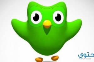 شرح وتحميل تطبيق دولينجو Duolingo