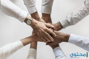 تعبير عن التعاون جديد