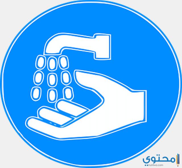 النظافة والنظام