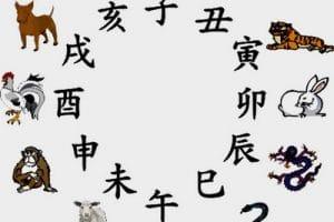 تعرف على برجك الصيني من تاريخ ميلادك