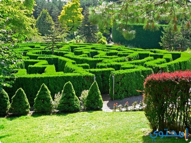 تفسير رؤية البستان والحدائق