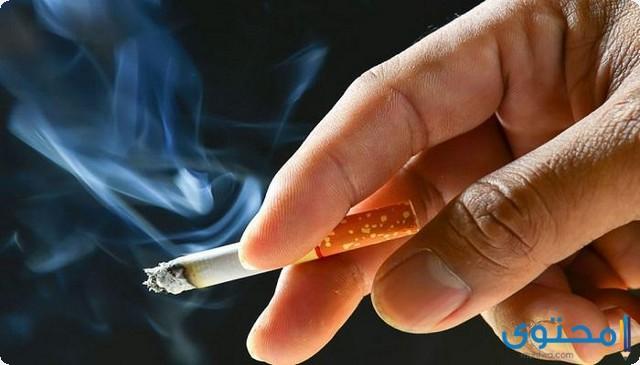 تقرير عن التدخين