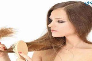 كيف أستخدم الحليب في علاج تقصف شعري