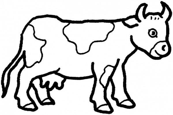 حيوانات المزرعة كليب ارت