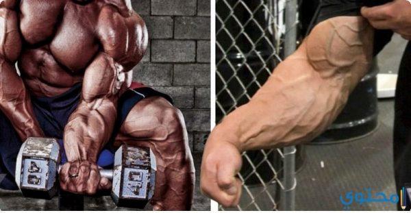 تمرينات عضلة الرست والساعد بالصور