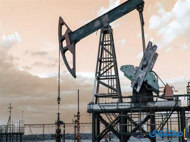 تنسيق مدارس البترول