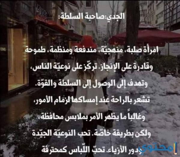 توافق برج الأسد مع برج الجدي في الحب