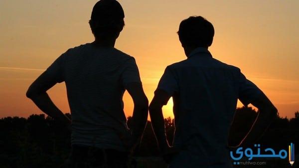 توافق برج الدلو مع برج القوس في الصداقة
