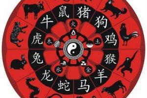 توقعات الأبراج الصينية 2017 مع ماغي فرح