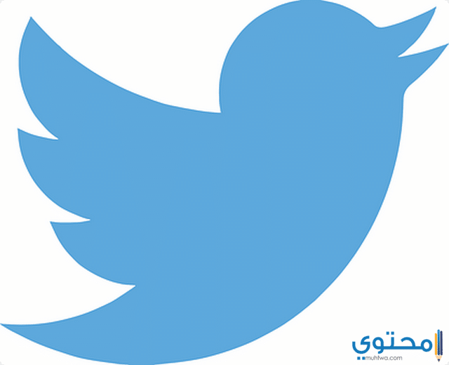 بداية تويتر