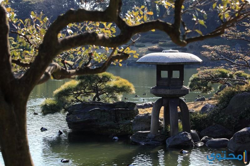 حديقة كيوزومي تين