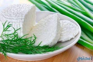 القيمة الغذائية للجبنة القريش واهميتها للتخسيس
