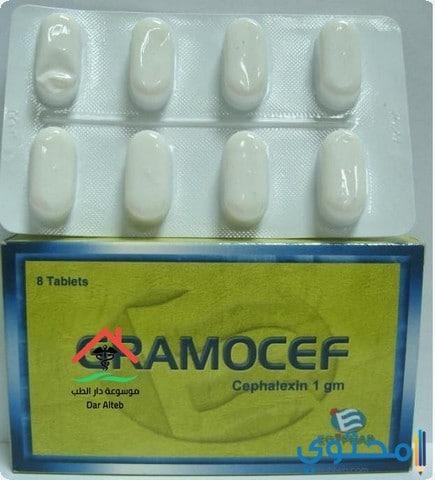 دواعي الإستعمال لدواء جراموسيف