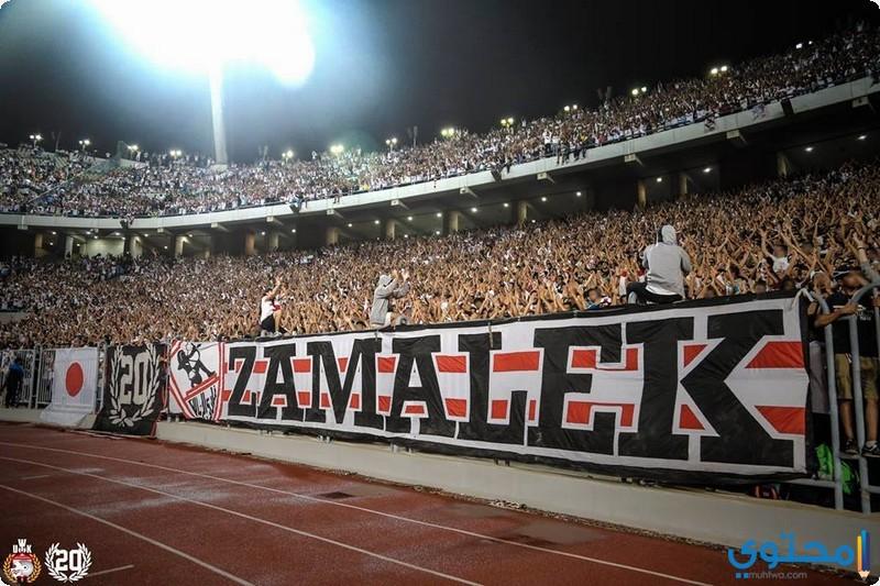صور جماهير الزمالك جديدة 2022 خلفيات نادي Zamalek - موقع محتوى
