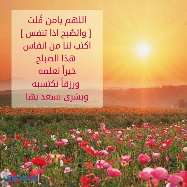 حالات صباح الخير اسلامية