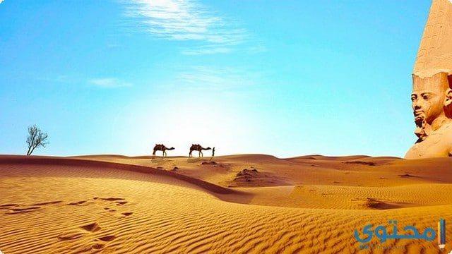 مصر بلد الحضارة