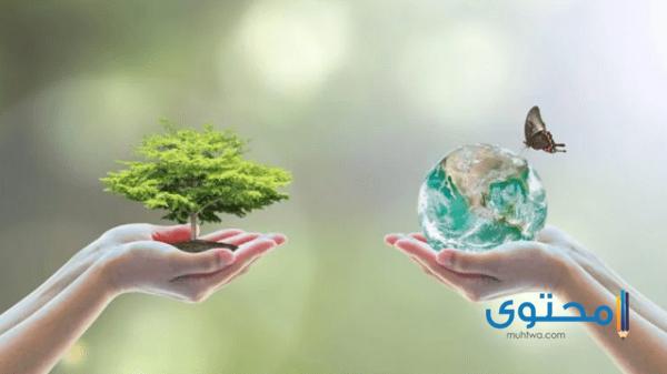 حل كتاب علم البيئة مقررات 1443 الفصل الأول والثاني - موقع محتوى