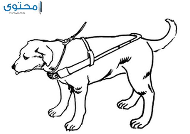 صور كلاب للتلوين