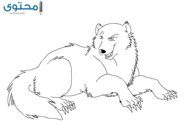 رسومات حيوانات مفترسة للتلوين