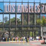 تقرير السياحة في لوس انجلوس بالصور