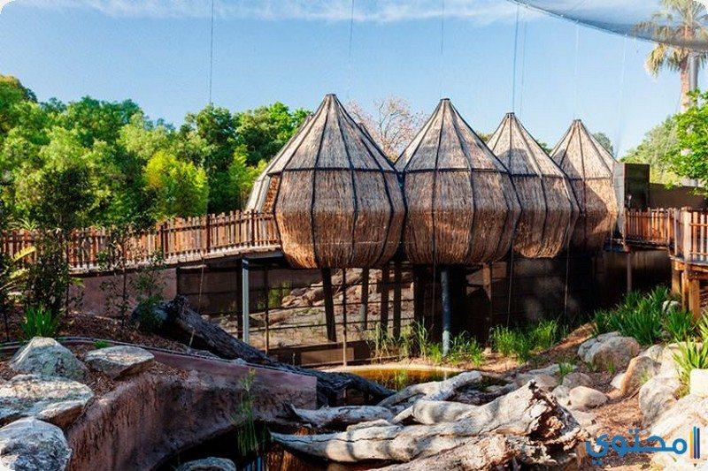 حديقة حيوان ملبورن