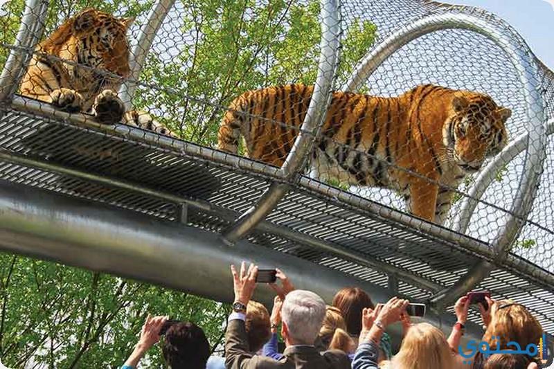 حديقة الحيوانات بفيلادلفيا