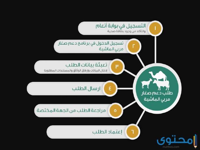 خطوات التسجيل في منصة انعام
