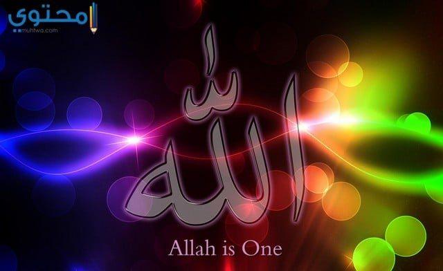 أجمل الصور الإسلامية والدينية