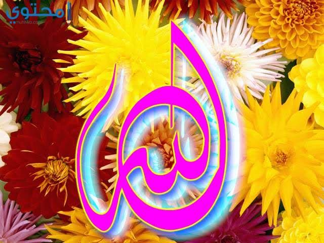 خلفيات اسلامية لفظ الجلالة