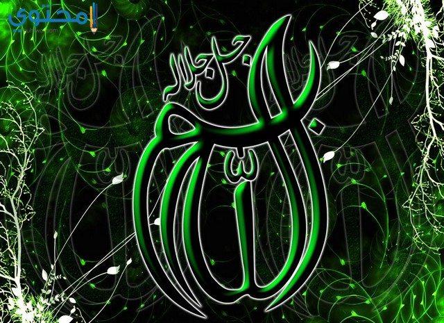 خلفيات إسلامية للفيس