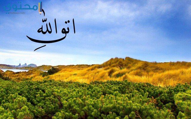 أجمل صور خلفيات إسلامية