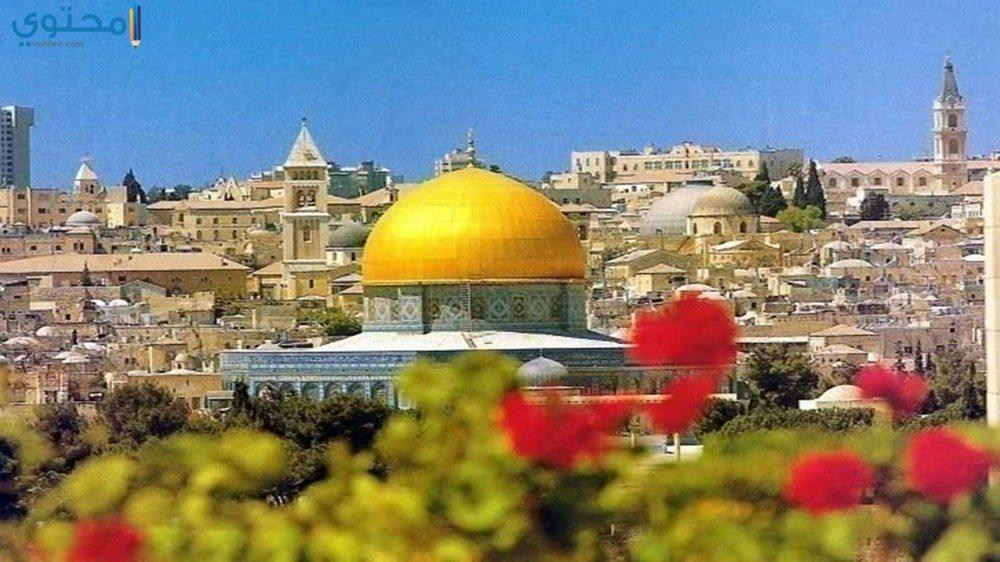 صور وخلفيات القدس