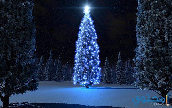 صور عيد الكريسماس