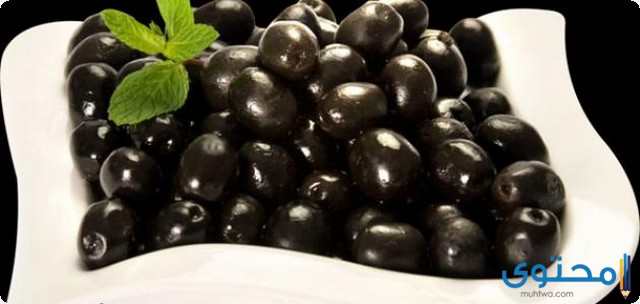 دراسة جدوى مشروع إنتاج الزيتون الأسود المخلل