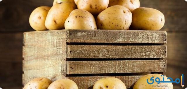 دراسة جدوى مشروع تقشير وتجميد البطاطس