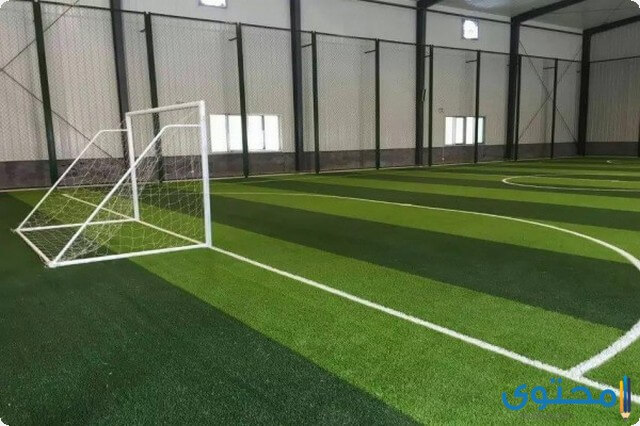 دراسة جدوى مشروع ملعب كرة قدم صناعي