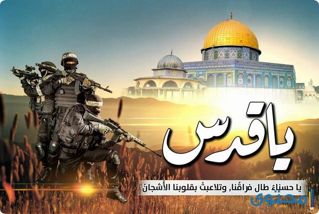 عبارات عن غزة