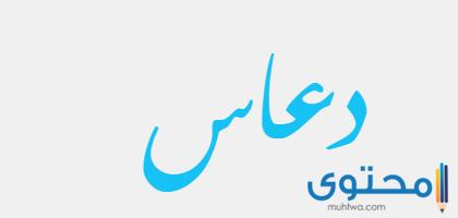 معنى اسم دعاس وصفات من يحمله