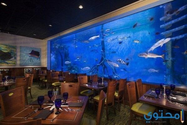 ديكورات مطاعم أسماك بسيطة