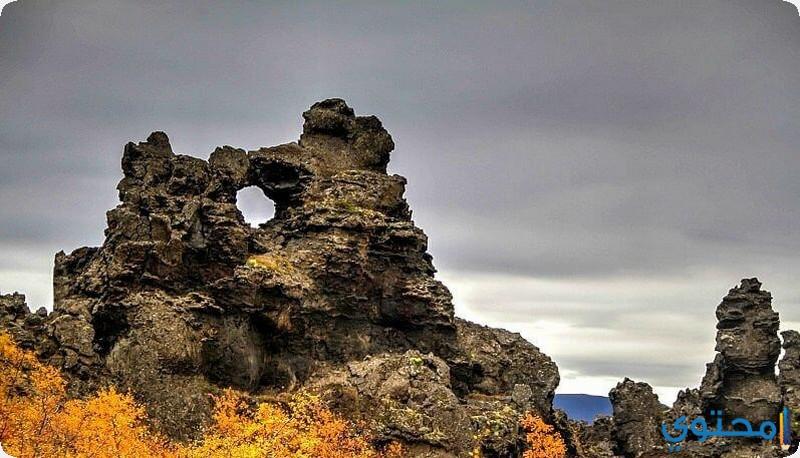 ديموبرغر ايسلندا