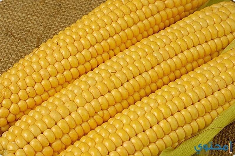 فوائد الذرة لخسارة الوزن