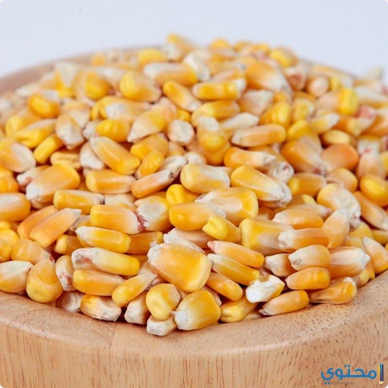 فوائد الذرة الصفراء للحامل