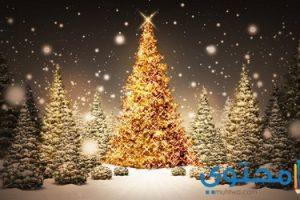 رسائل عيد الميلاد المجيد للمسيحيين 2018