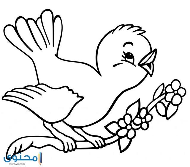 رسومات اطفال للتلوين للبنات