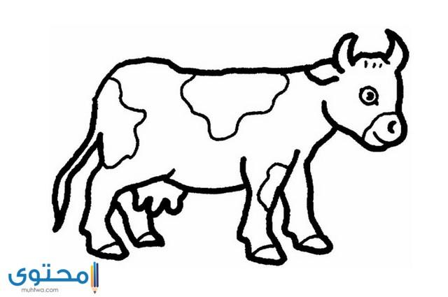 رسومات تلوين للاطفال حيوانات