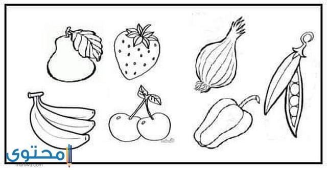 رسومات تلوين عن الغذاء الصحي