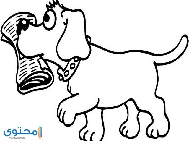 رسومات جاهزة للتلوين للأطفال