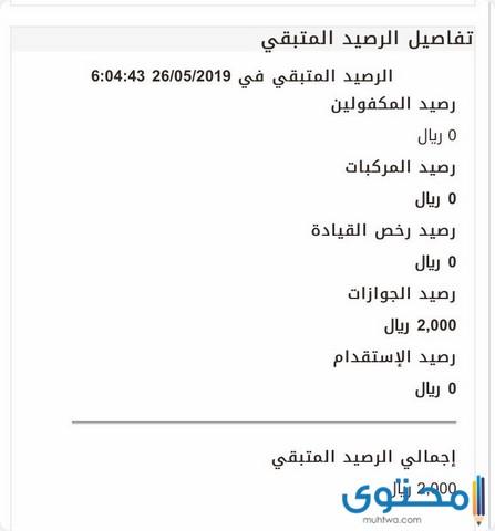 المتفجرات محمص عرب الاستعلام عن الرصيد المتبقي وزارة الداخلية Saulnaymazerolles Com